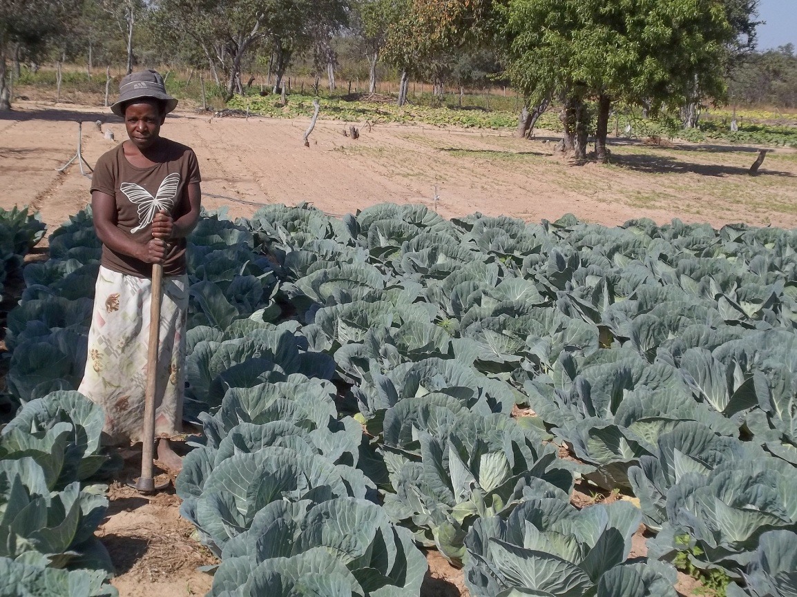 Our Future Grown in Africa: Agriculture in the AfricaUnion